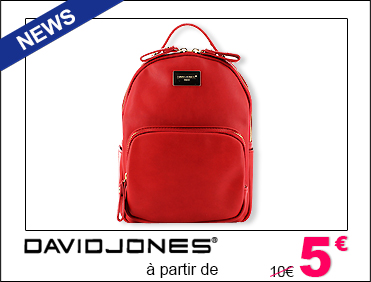 SAC A MAIN DAVID JONES